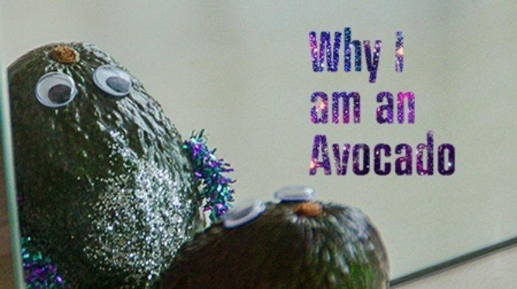 Why I am an Avocado