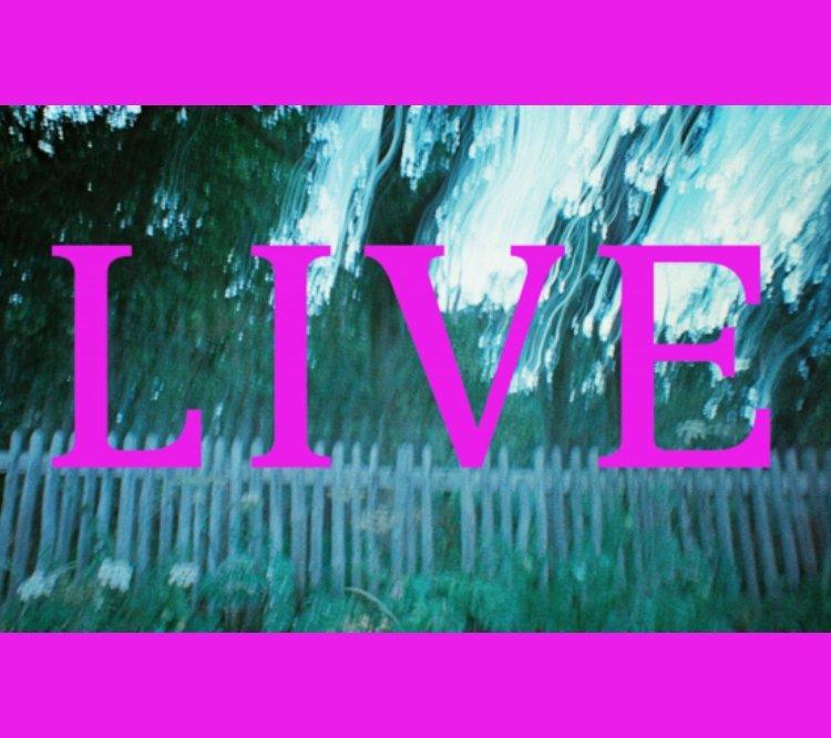 Live 11