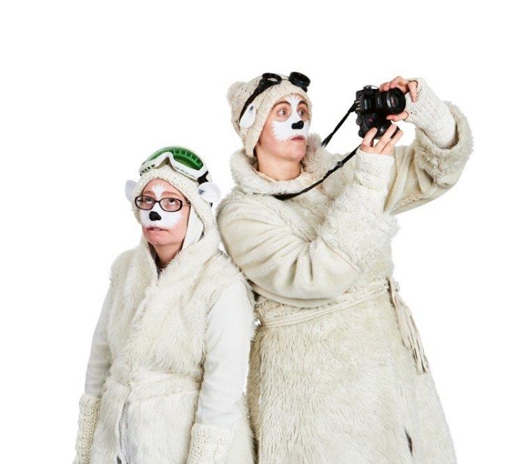 The Polar Bears Go, Go, Go!