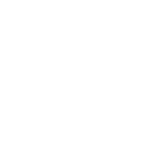 Gracefool Collective