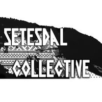 Setesdal Collective