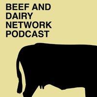 Beef & Dairy Network