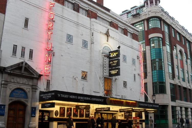 Fortune Theatre cover